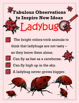 Biomimicry Fabulous Observations - Ladybirds