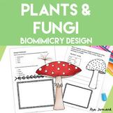 Plants & Fungi - STEAM, Biomimicry