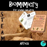 Africa, Animals - STEAM, Biomimicry
