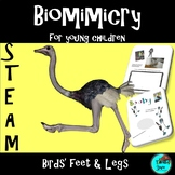 Project Based Learning: Birds' Feet & Legs, NGSS, Digital