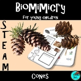 Cones, Project Based Learning: STEAM, NGSS, Biomimicry, Di