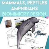 Mammals, Reptiles & Amphibians - STEAM, Biomimicry