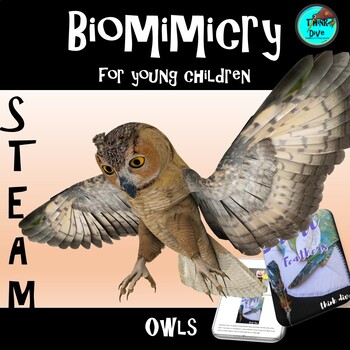 STEM - Biomimicry for Young Children - Owls