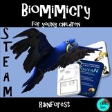 Rainforest, Animals, Plants - STEAM, Biomimicry
