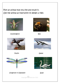 STEM - Biomimicry for Young Children - Robots