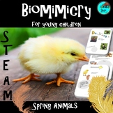 Spring Animals & Biomimicry Lapbook - STEAM