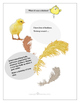 STEM - Biomimicry for Young Children - Spring Animals