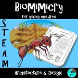 STEM - Biomimicry for Young Children - Architecture and Design