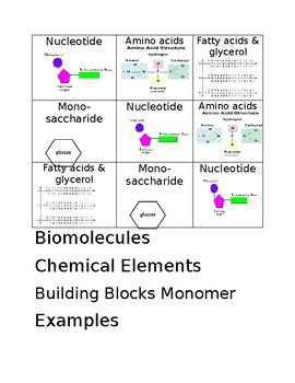 Biomolecule Card Sort Cards