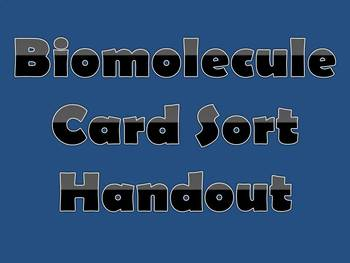 Biomolecule Card Sort Handout