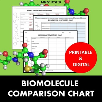 Biomolecule Comparison Chart