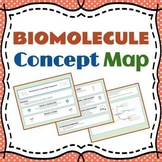 Biomolecule Concept Map