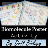Biomolecule Poster Activity