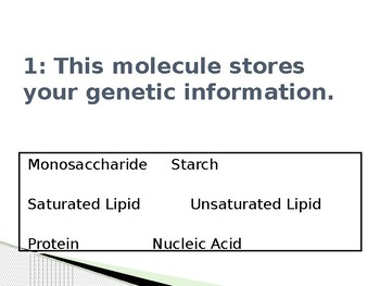 Biomolecule Power Point Review