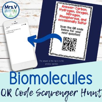 Biomolecule review teaching resources teachers pay teachers biomolecules macromolecules qr code scavenger hunt activity fandeluxe Gallery