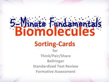 Biomolecule Sorting Cards : 5-Minute Fundamentals