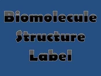 Biomolecule Structure Label Assignment