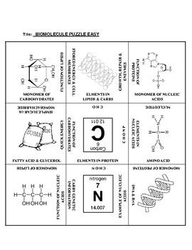 Biomolecules: 9 Square Puzzle Card Sort EASY