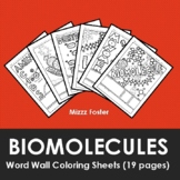 Biomolecules / Biochemistry Word Wall Coloring Sheets (18 pages)
