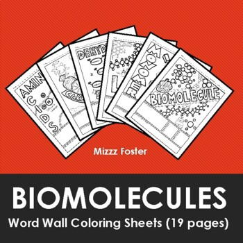 Biomolecules / Biochemistry Word Wall Coloring Sheets (15 pages)