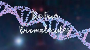 Biomolecules Foldable