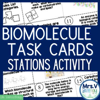 Biomolecules (Macromolecules) Task Cards