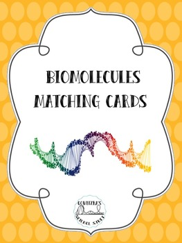 Biomolecules Matching Cards