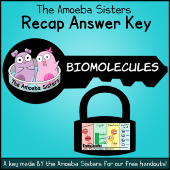 Biomolecules Recap Answer Key by the Amoeba Sisters (Amoeba Sisters answer key)