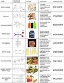 Biomolecules Review Cut & Paste Activity