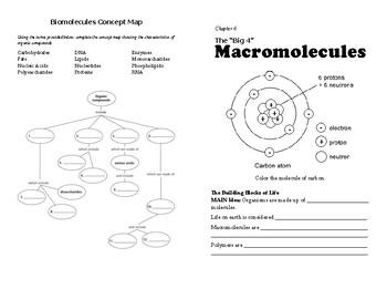 Biomolecules Self-Paced Booklet