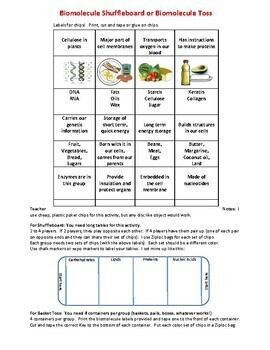 Biomolecules Review Shuffleboard or Toss Game
