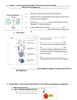Worksheets Biomolecules Worksheet biomolecules worksheet by a really great teacher teachers pay worksheet