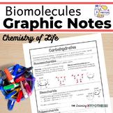 Biomolecules Worksheet.  Graphic Notes.  Digital and Print
