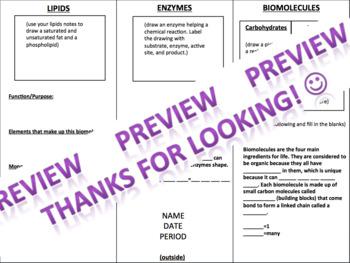 Biomolecules / macromolecules / organic molecules Brochure Project