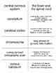 Biopsychology Part I Flash Cards For Psychology
