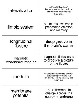 Biopsychology Part II Flash Cards For Psychology