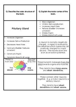 Biopsychology Revision Cards - AQA Psychology
