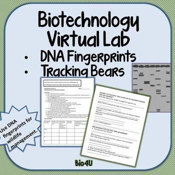 Biotechnology Internet Virtual Lab