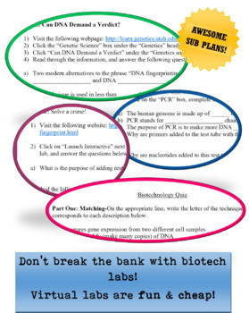 Biotechnology Virtual Lab Worksheets