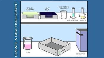 Biotechnology Virtual Labs