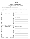Biotic, Abiotic, Food chains