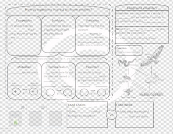 Biotic Interactions (Ecology) Student Notes Sheet