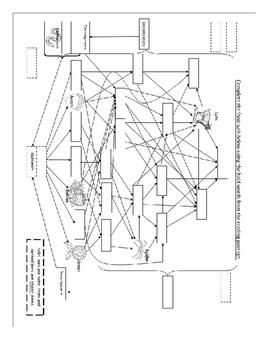 Biotic, abiotic, consumer, producer, decomposer, food web review
