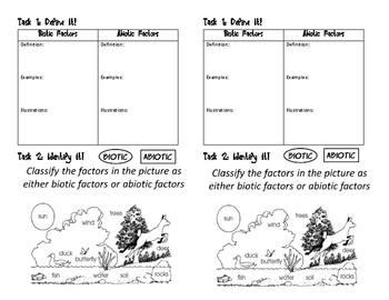 Biotic And Abiotic Factors Worksheets   Teachers Pay Teachers