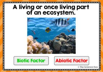 Biotic and Abiotic Factors - Digital Boom Cards Sort