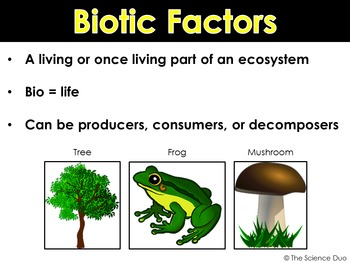 Biotic and Abiotic Factors PowerPoint and Notes
