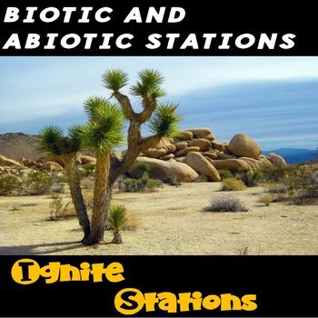 Biotic and Abiotic Stations