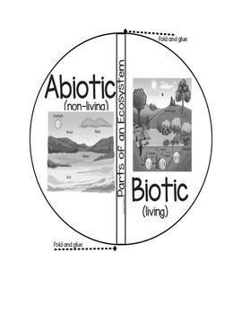 Biotic vs. Abiotic Factors in an Ecosystem