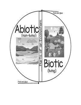 Biotic vs. Abiotic Factors in an Ecosystem