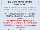 Biotic vs Abiotic Group Activity Power Point